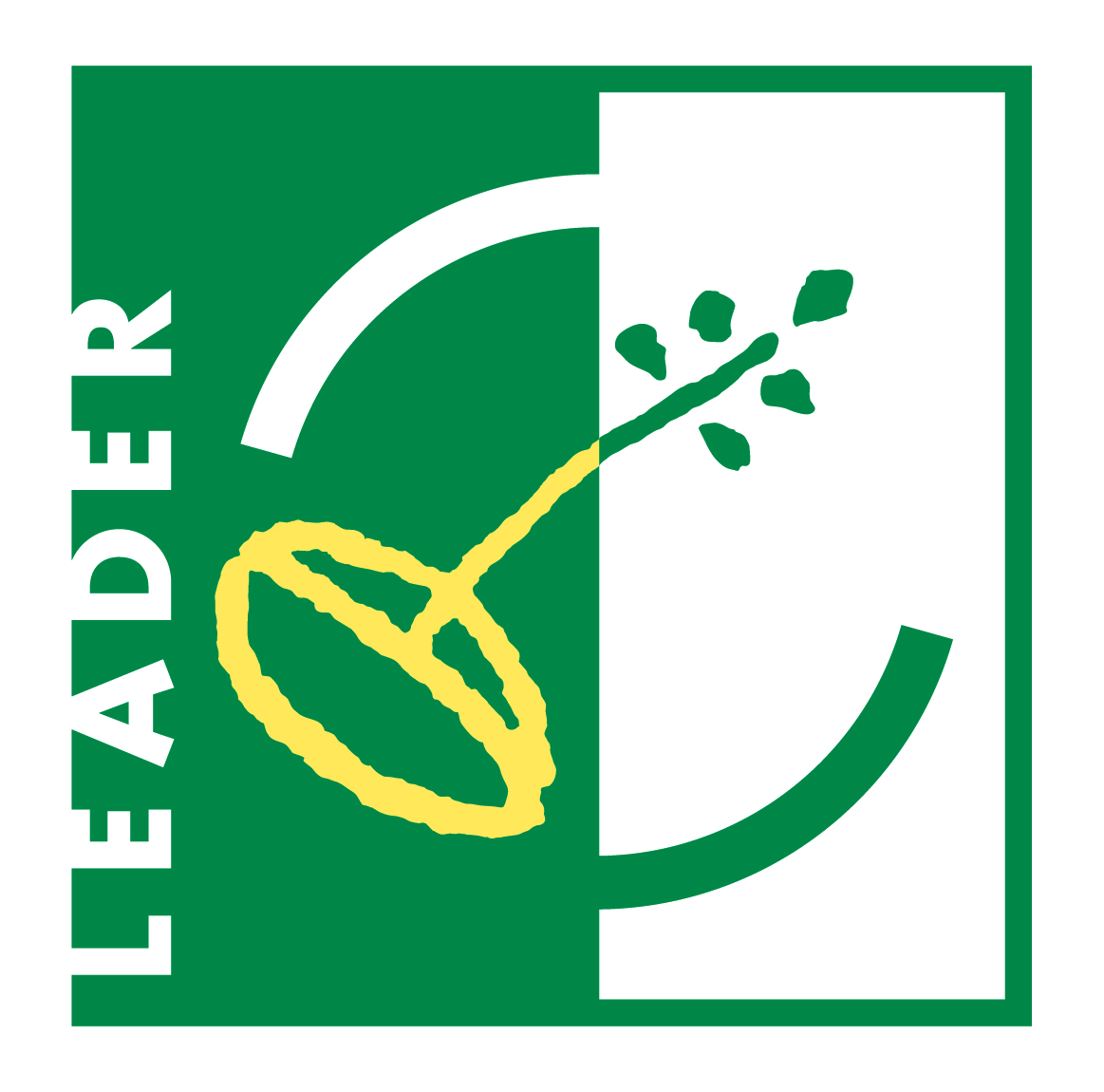 leader hdprint 01 copie